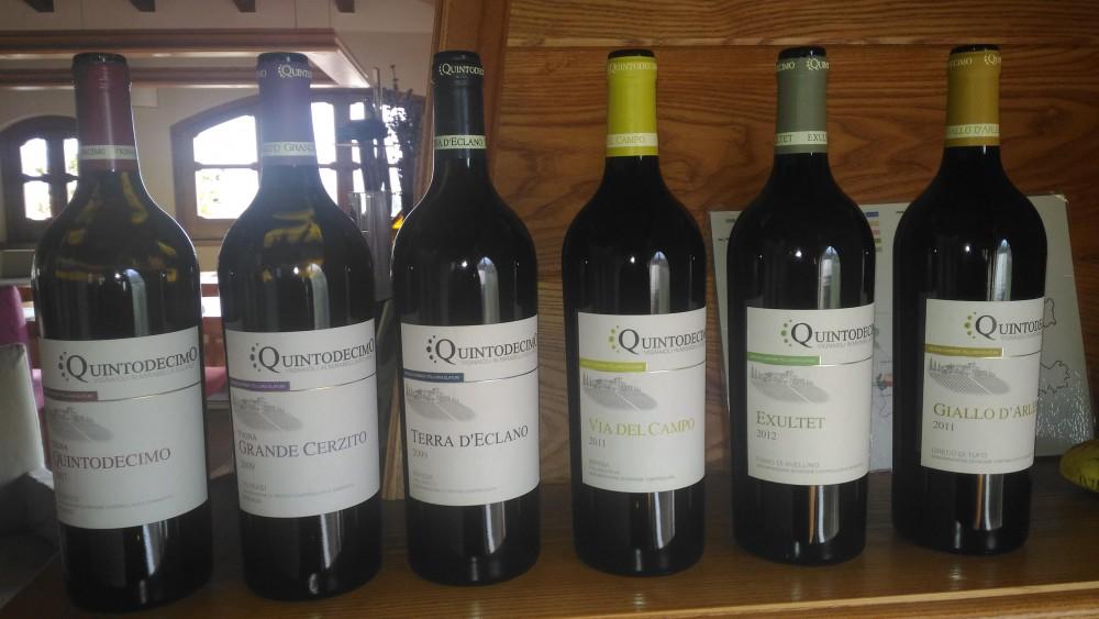 Batteria di vini di Quintodecimo