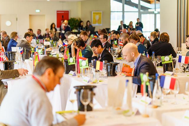 Concorso Mondiale del Sauvignon la sala di degustazione