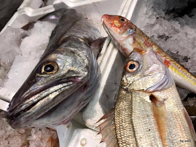 Nannina in Pescheria Pietro Parisi il pescato del giorno