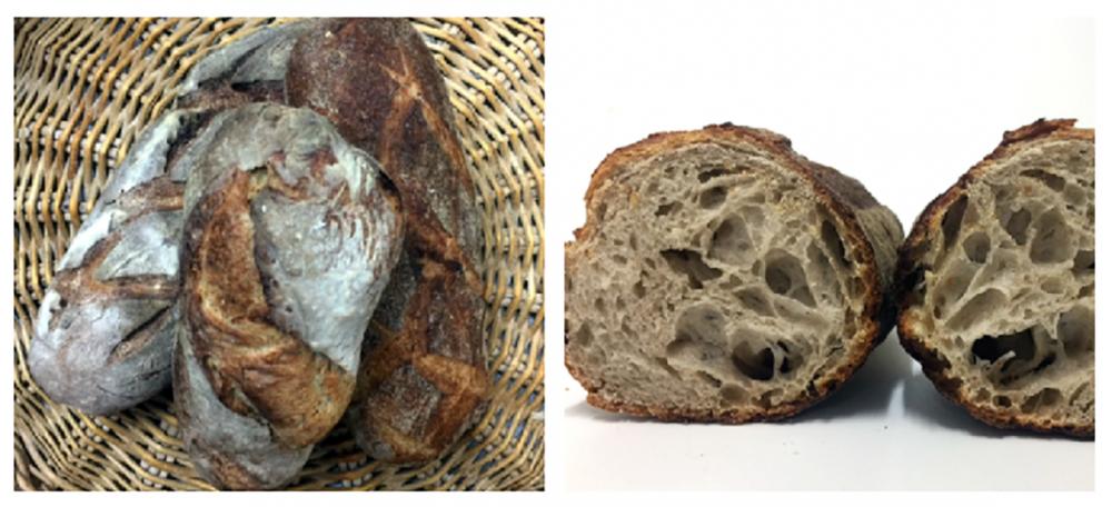 Pane di Cristian Torsiello