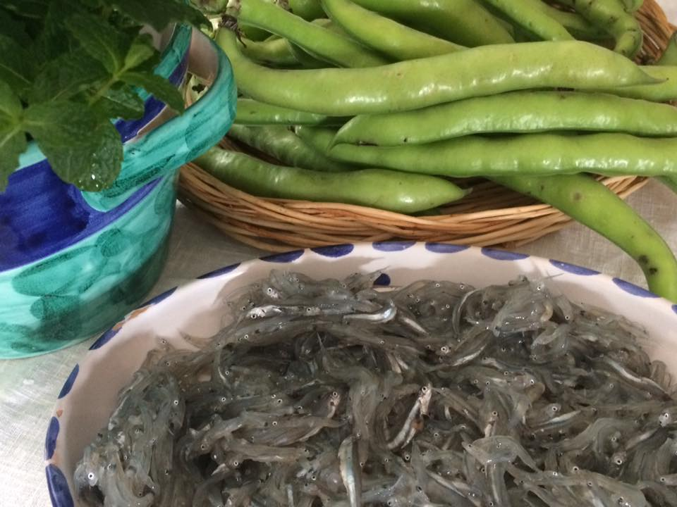 Binachetti, fave e menta fresca