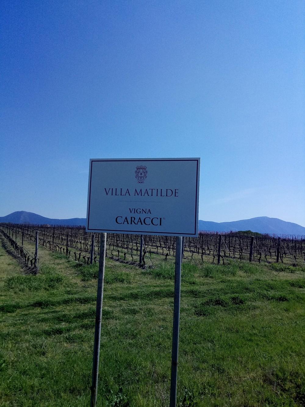 Villa Matilde Insegna Vigna Caracci