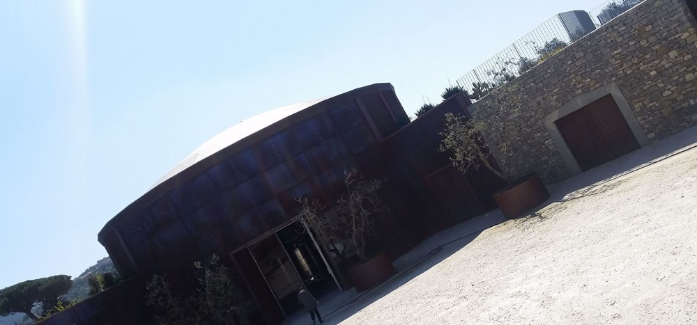 Campo alle Comete, l'ingresso della cantina