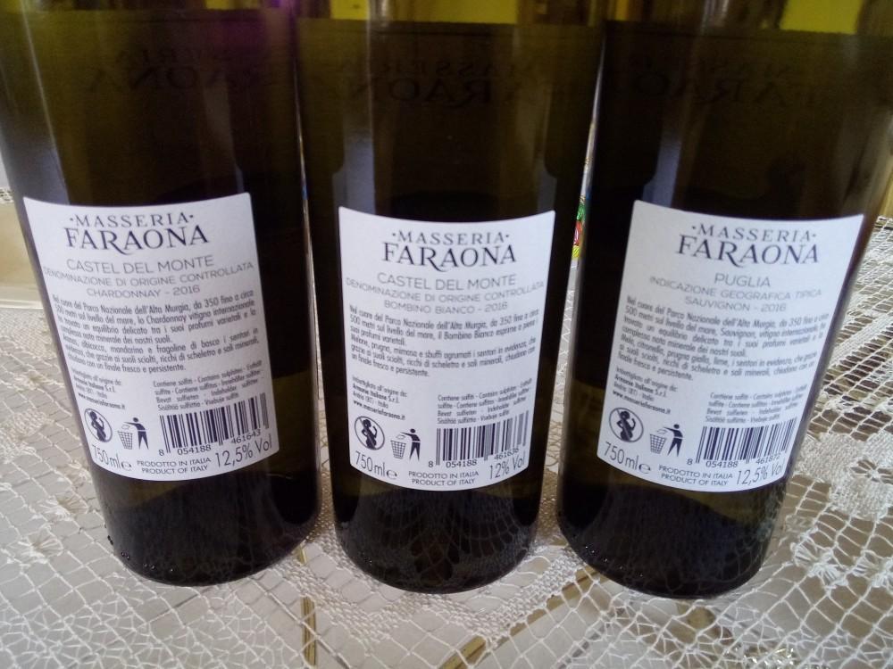 Controetichette Vini di Masseria Faraona