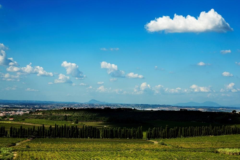 Merumalia, vista terrazza