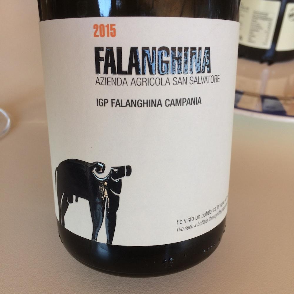 San Salvatore - la Falanghina 2015