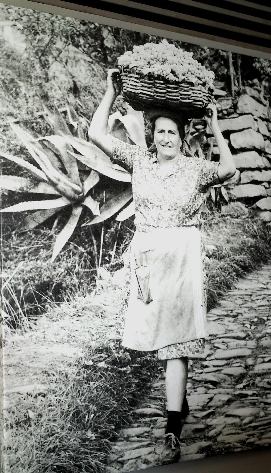 Donna con cesto d'uva