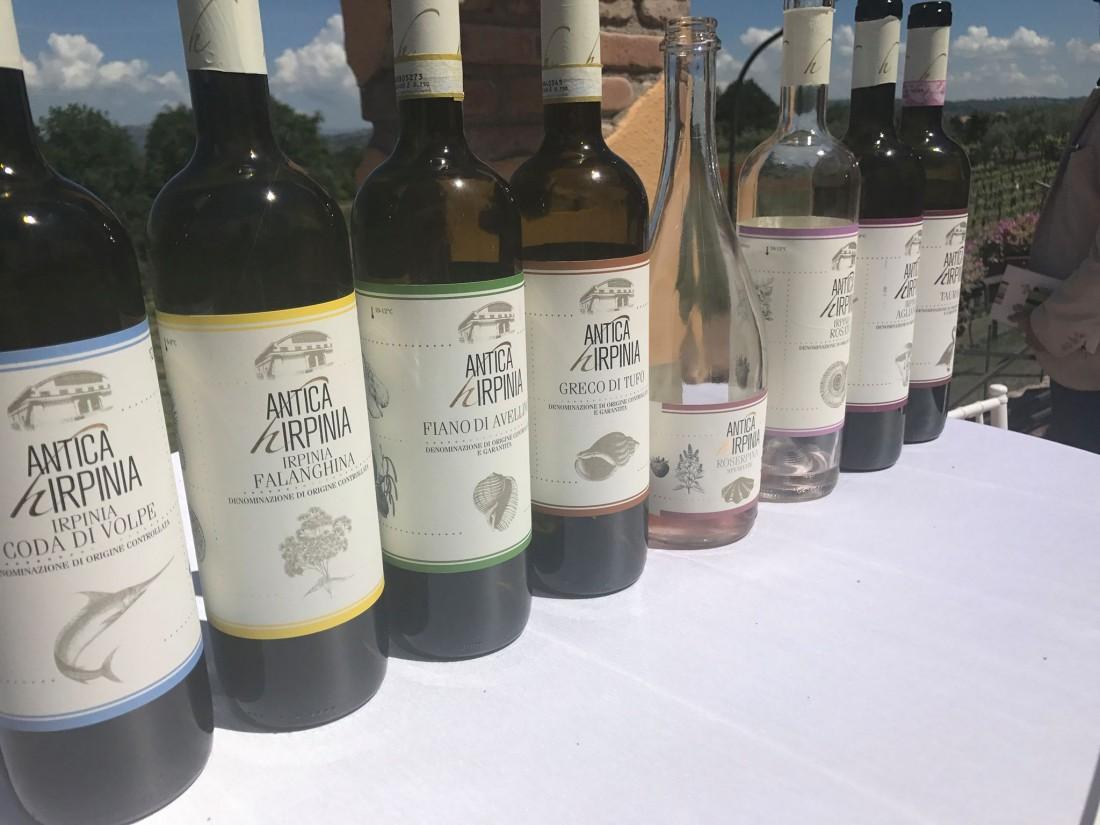I vini di Antica Hirpinia