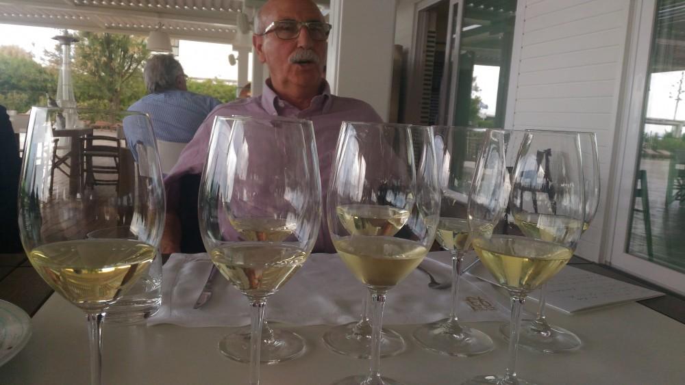 Degustazione vini di San Salvatore