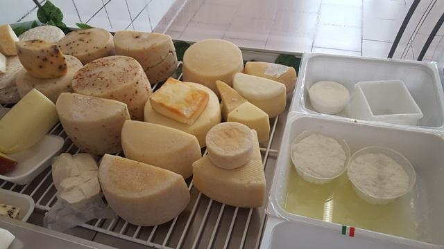 Fattoria Colle San Nicola - i formaggi