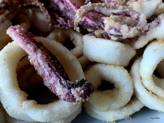Bianca Zita calamari fritti