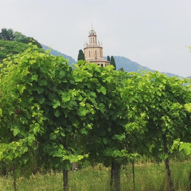 La bellezza del paesaggio della zona di produzione del Prosecco Superiore, dove si incastonano sovente chiese e castelli