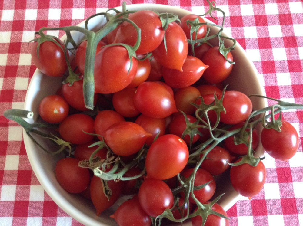 Scialatielli risottati, i pomodori freschi