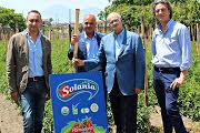 Solania e Associazione Verace Pizza Napoletana rinnovano l'accordo
