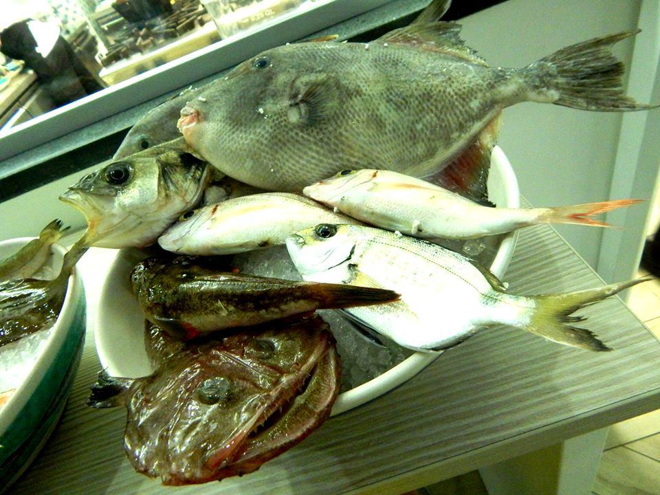 Triglia - Il pescato del giorno