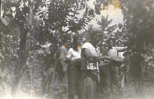 Dimostrazione solforatura fine Anni '40