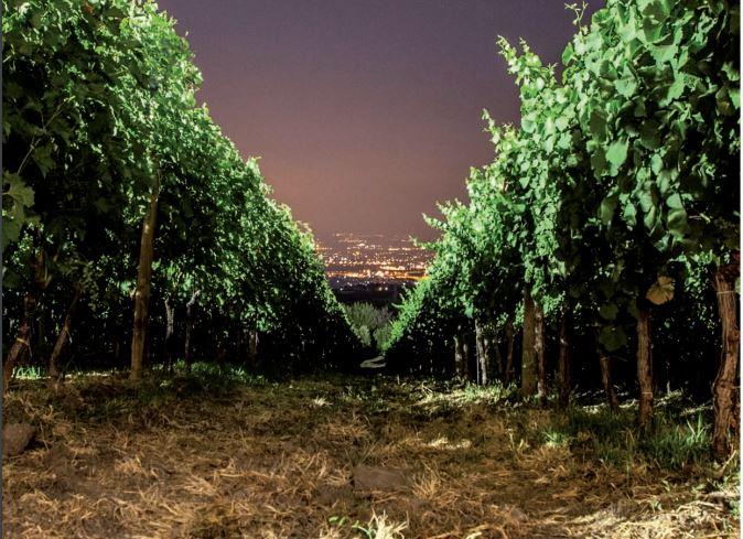 Poggio Le Volpi, vista serale su Roma