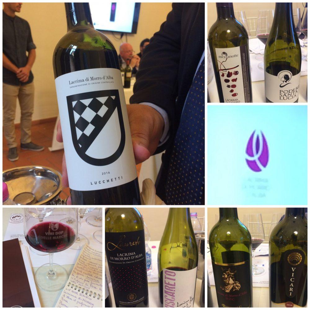 Alcune Bottiglie di Lacrima di Morro D'Alba Lucchetti, Mezzanotte, Podere Santa Lucia, Buscareto, Vicari e il logo del Vino