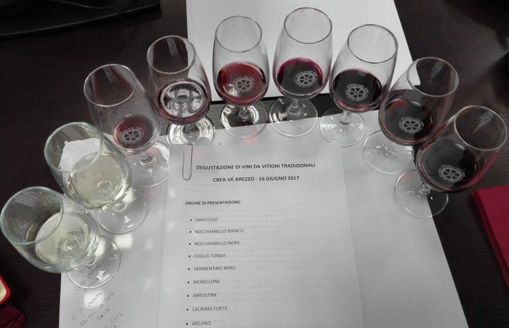 Crea - degustazione di vini da vitigni toscani antichi e rari