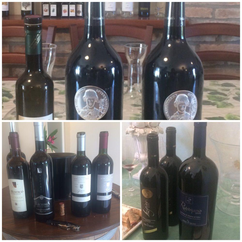 Sono solo 25 i produttori che coltivano e vinificano il Lacrima di Morro D'Alba