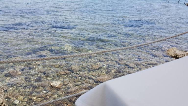 Vini...le, il mare dal tavolo
