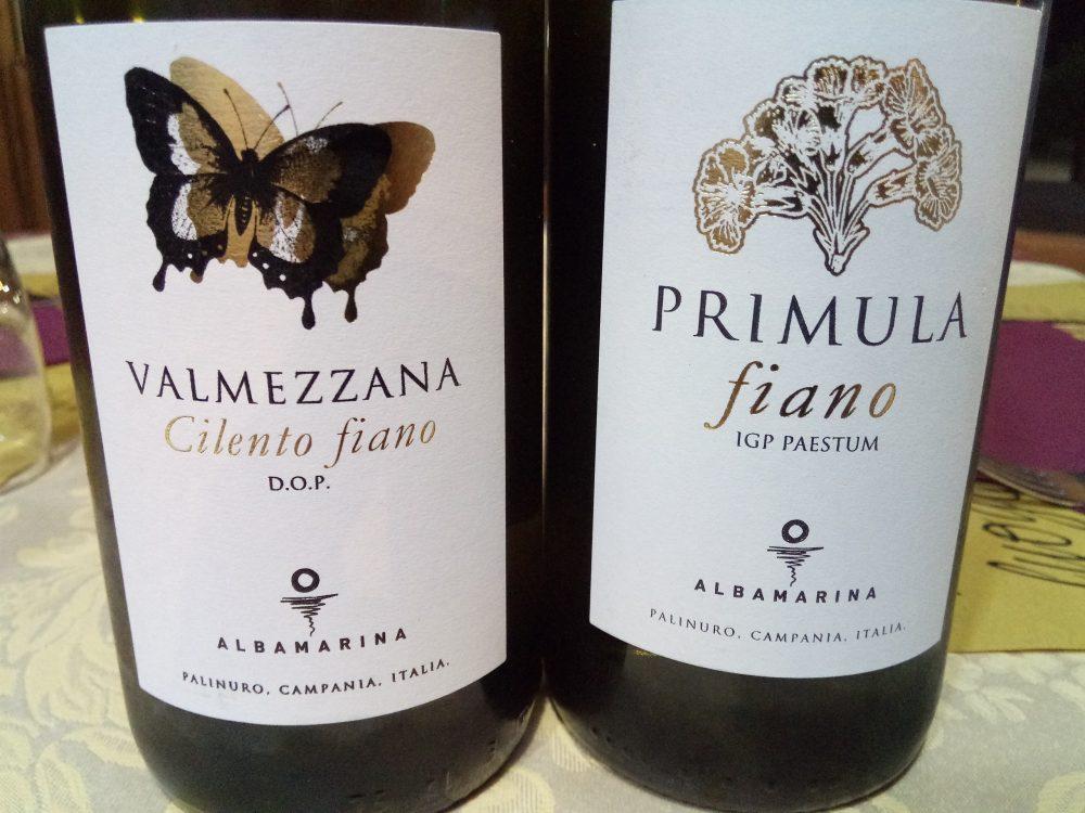 Primula e Valmezzana Fiano Albamarina