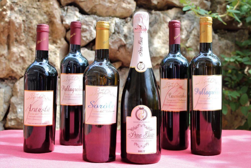Masseria Piccirillo, le tipologie di etichetta
