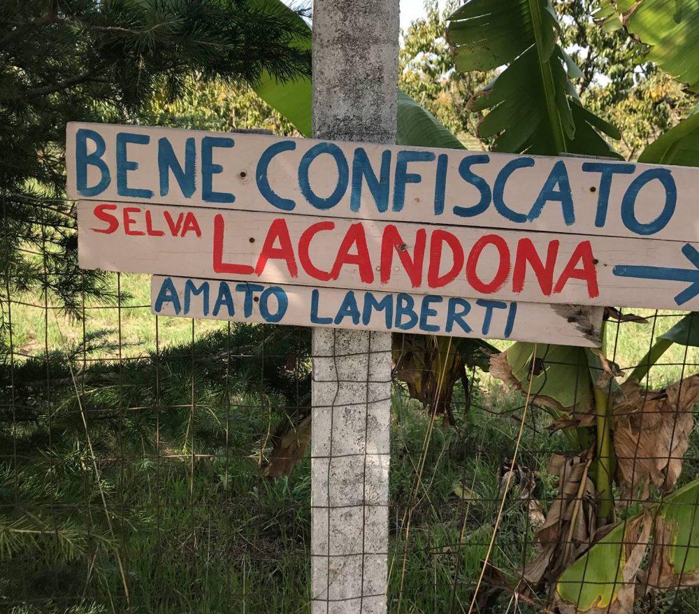 La Falanghina della Legalita' - Lacandona