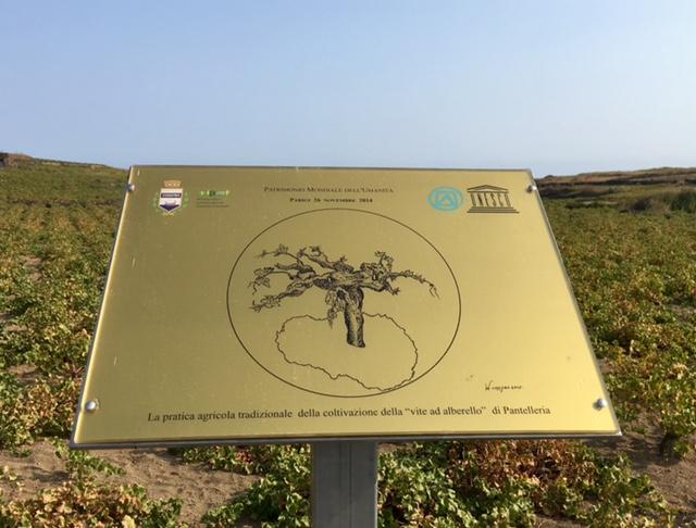 Targa Unesco