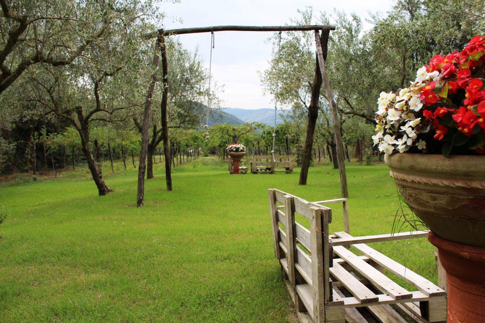 Masseria Piccirillo – parco interno