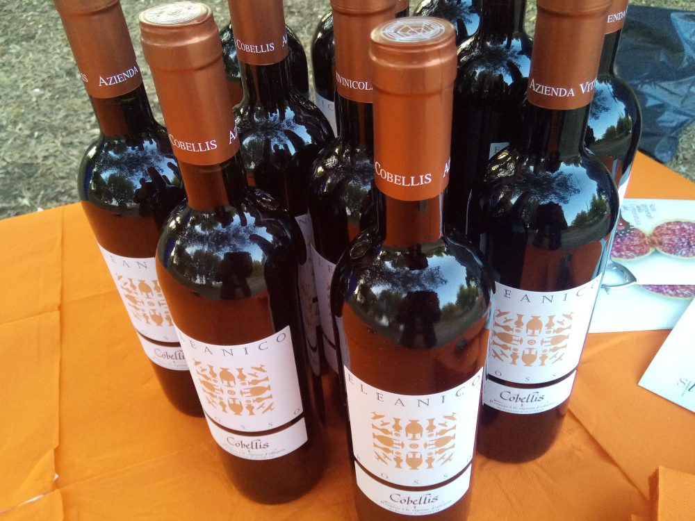 Bottiglie di Eleanico Rosso Barbera Igp Paestum 2016 Cobellis