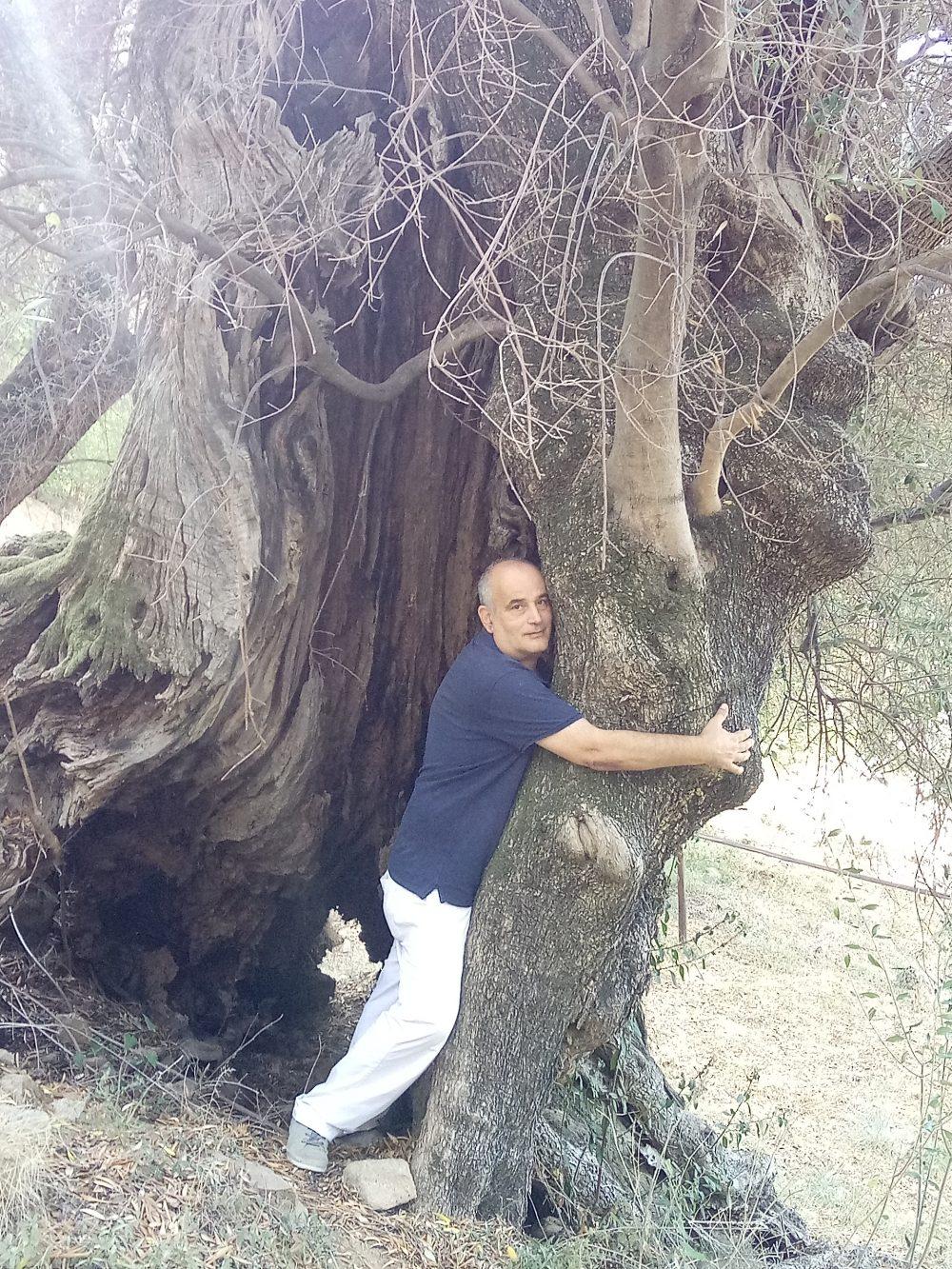Carlo Sacchi mentre abbraccia l'albero di ulivo ultramillenario