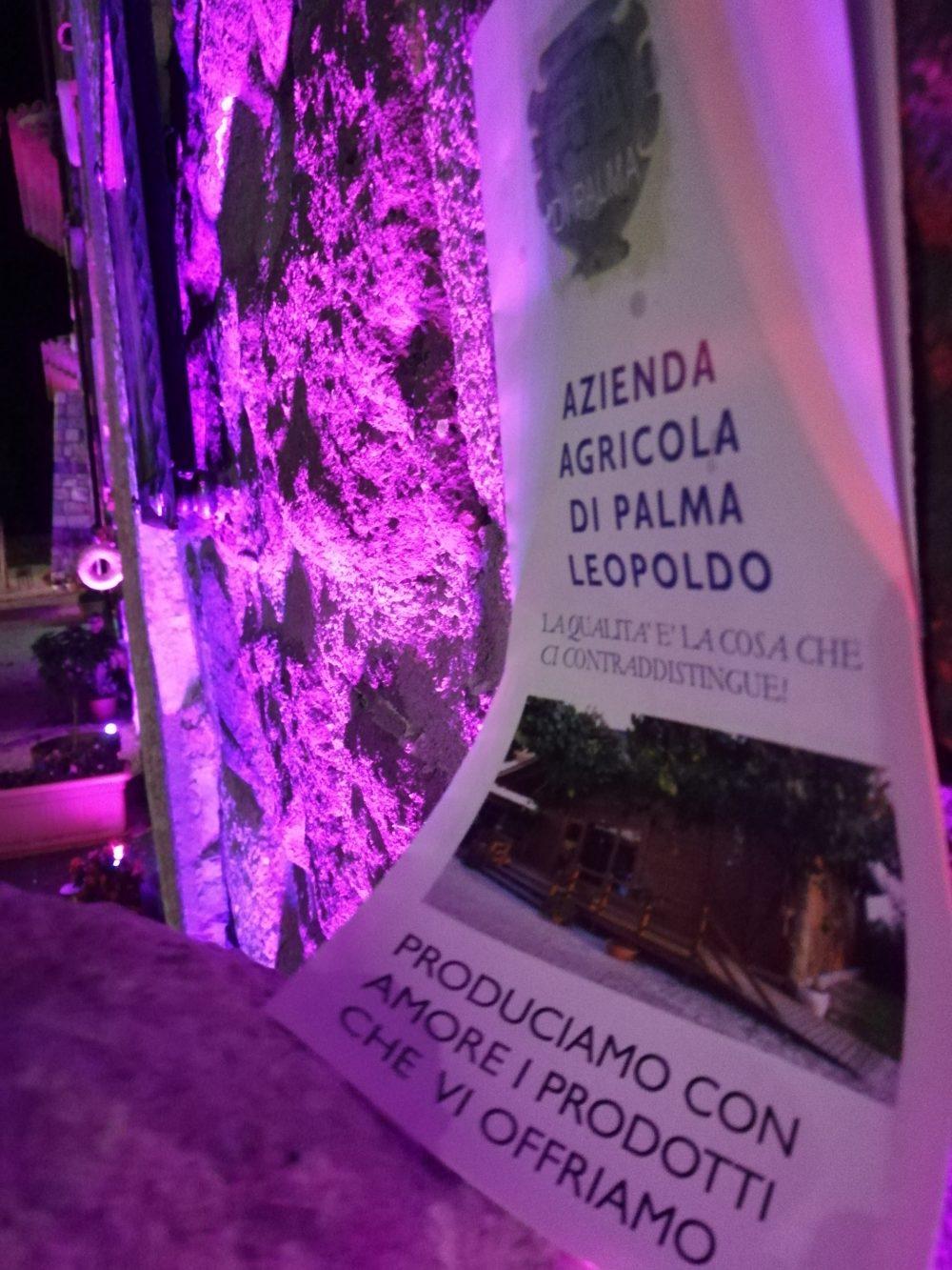 Casale di Palma - L'Azienda Agricola