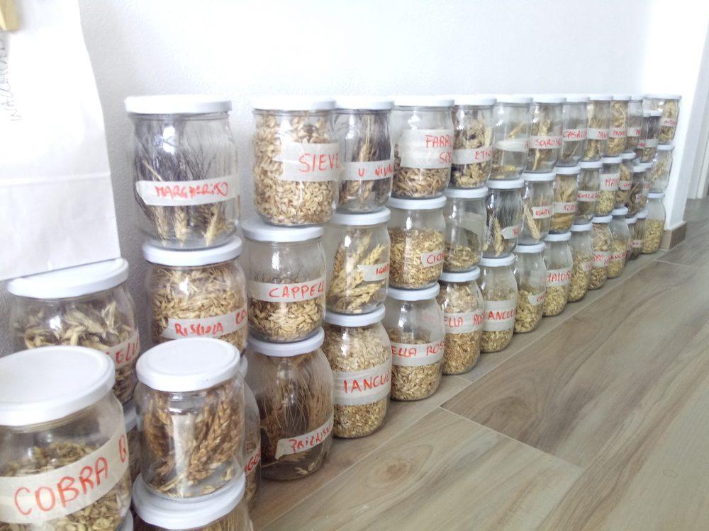Mulino a Pietra - Vasetti di cereali