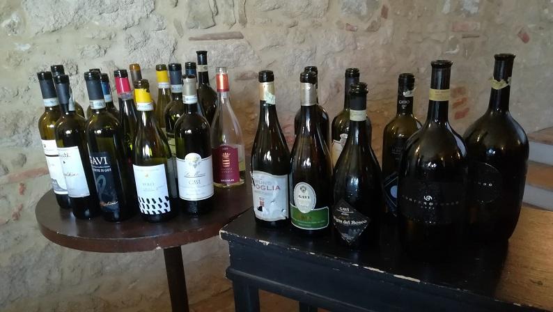 Verticale di Gavi Docg - I vini degustati