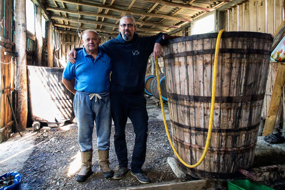 Romania - Il vino del contadino