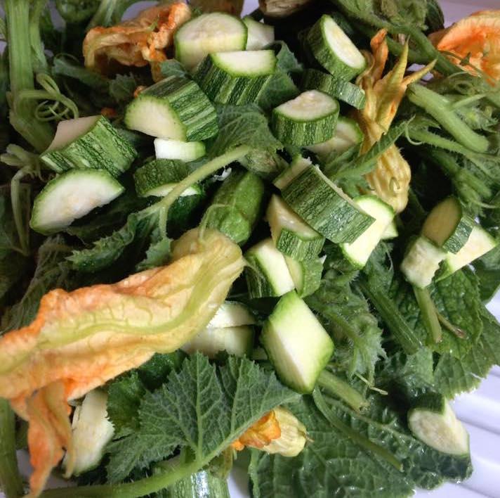 Tenerumi, fiori di zucca e zucchini