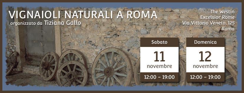 Vignaioli Naturali a Roma 11- 12 novembre 2017