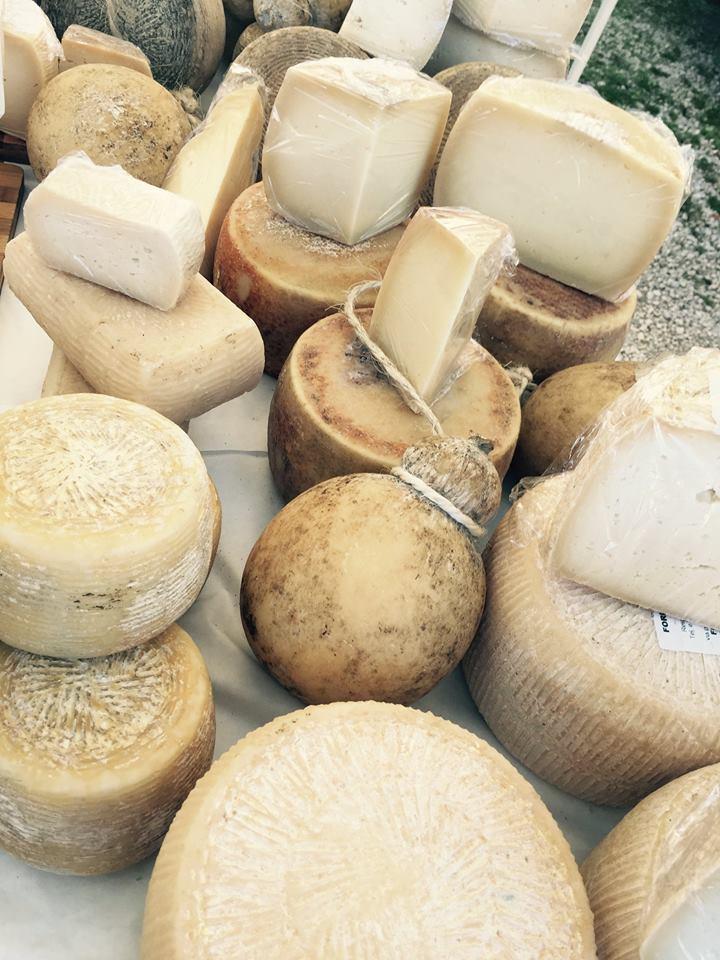 Vino e Olio in Festa - formaggi