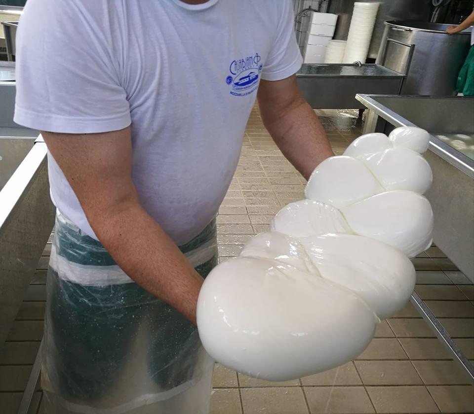 Casabianca Casearia, Treccione di bufala Dop 12 kg