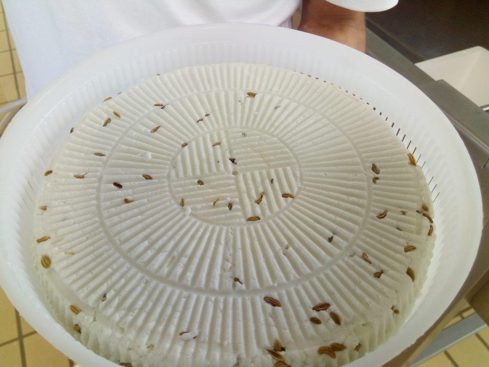 La Tenuta Bianca, Formaggio Silentino con finocchietto