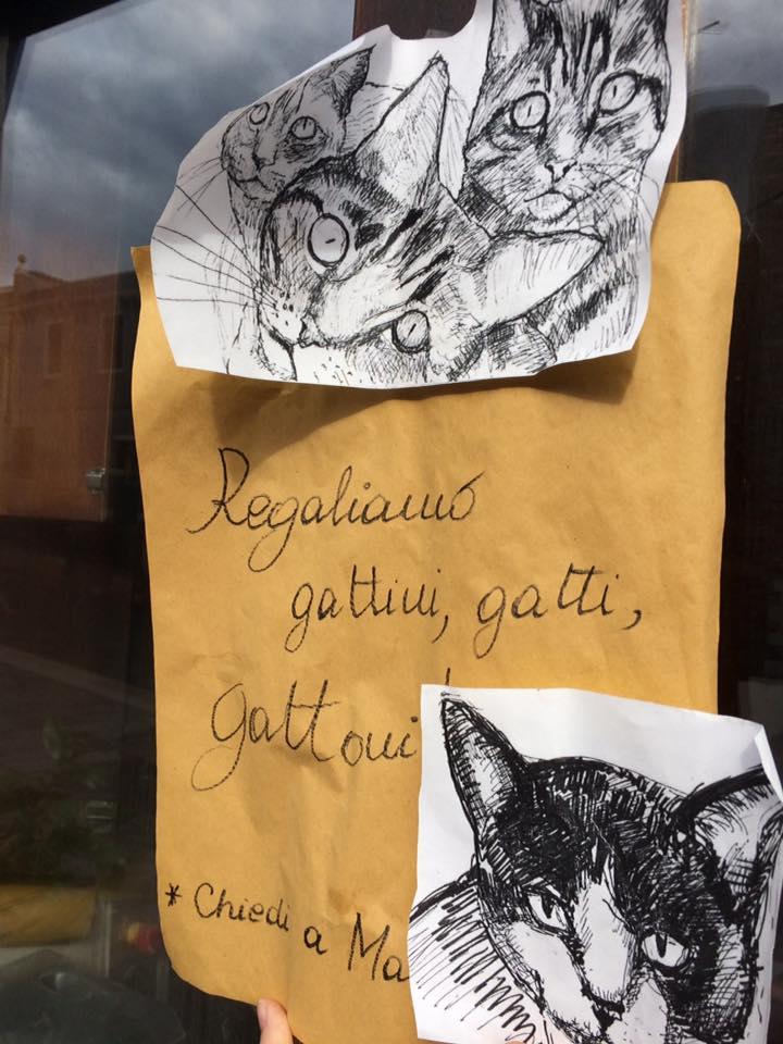 Paradiso Perduto, avviso sui gatti