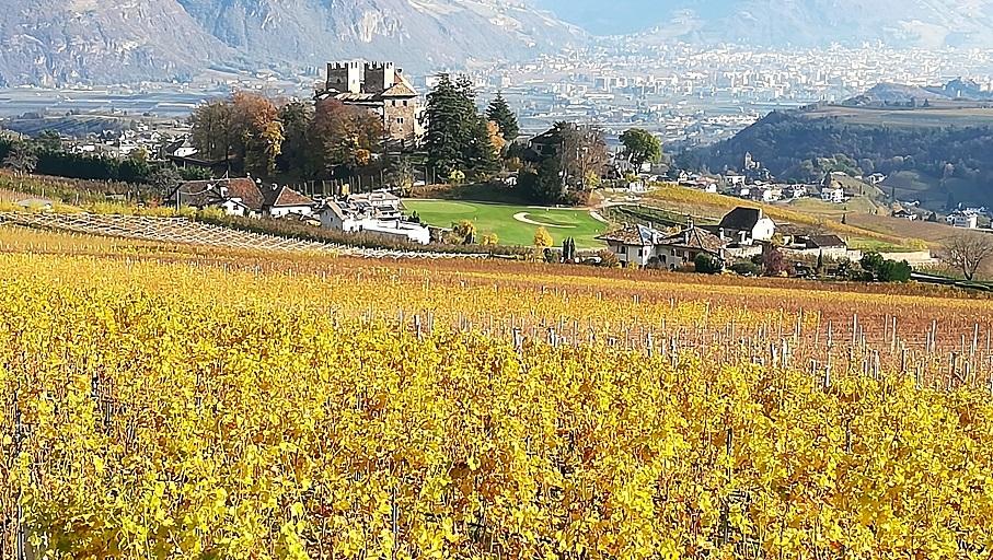 Compleanni alla cantina di San Michele Appiano - Panorama