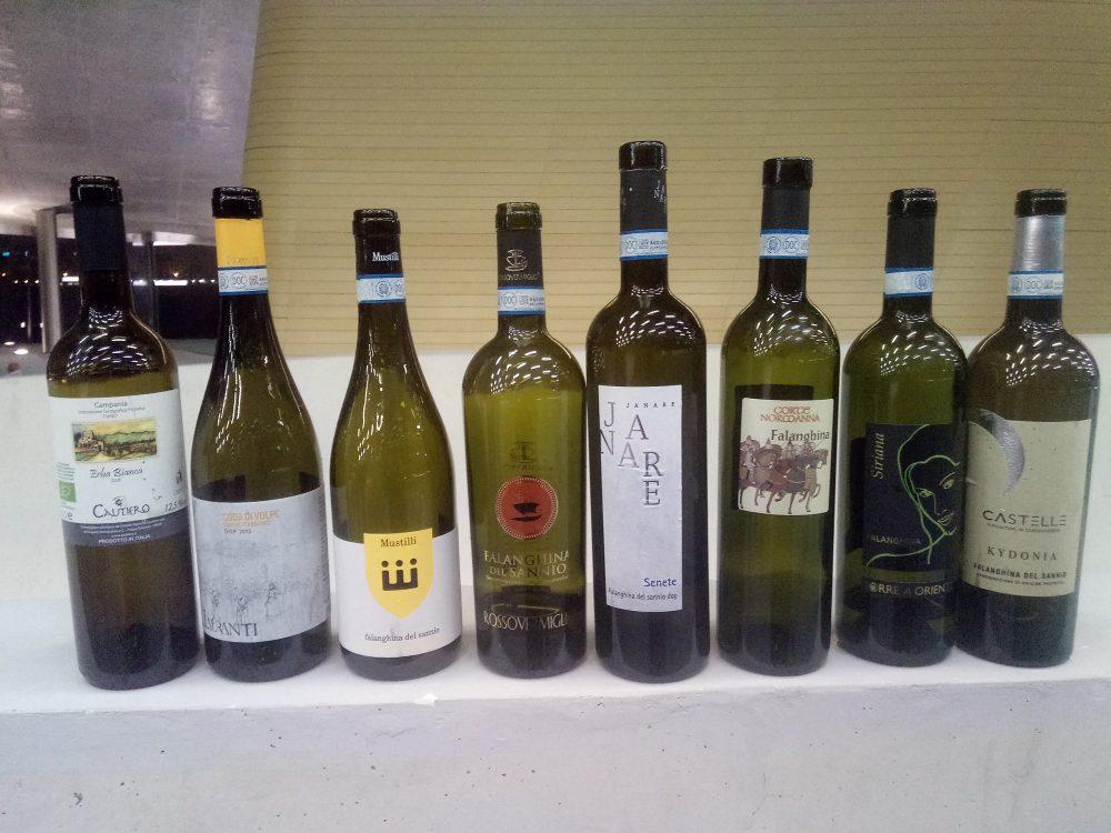 In Vino Civitas Alcune bottiglie di vini assaggiati del Sannio