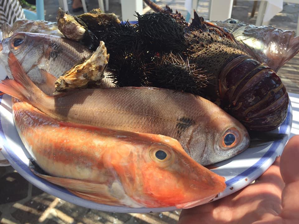 La taverna del mozzo, il pescato del giorno