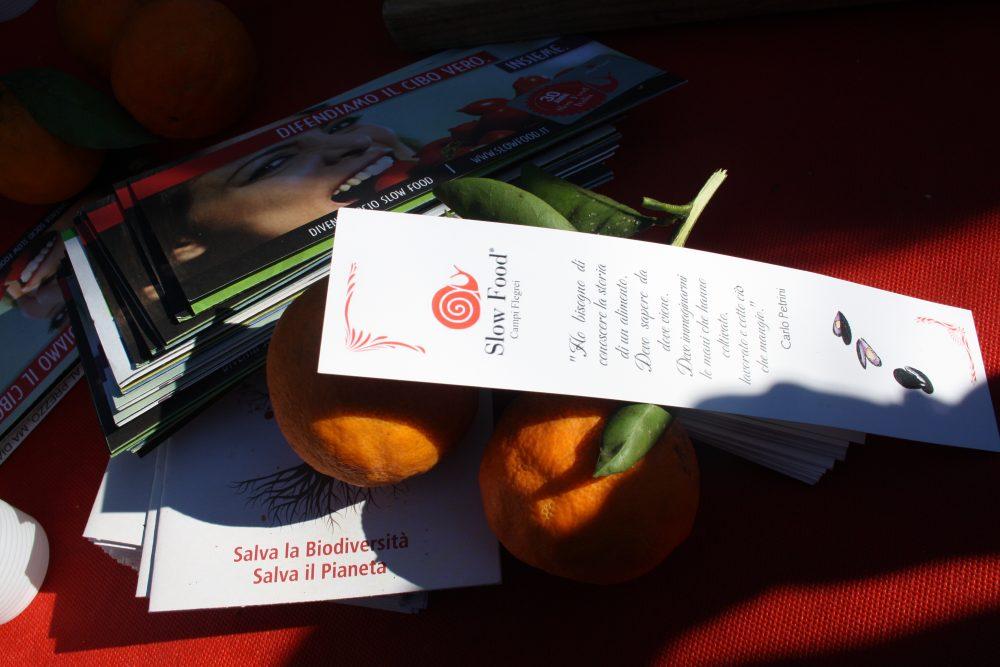 La terza B del liceo scientifico Ettore majorana di Pozzuoli ospite della Condotta Slow Food Campi Flegrei