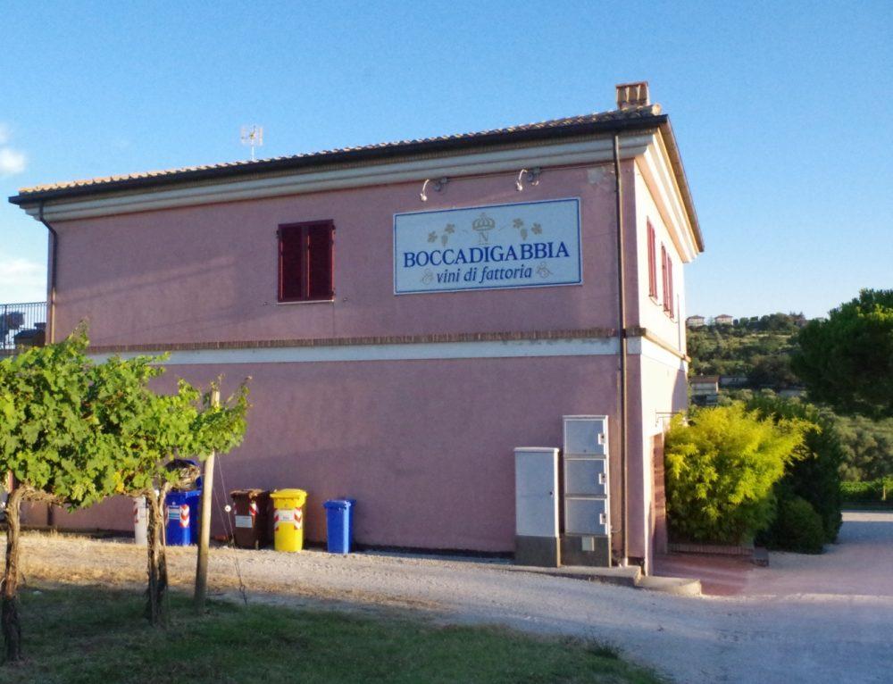 Azienda Boccadigabbia