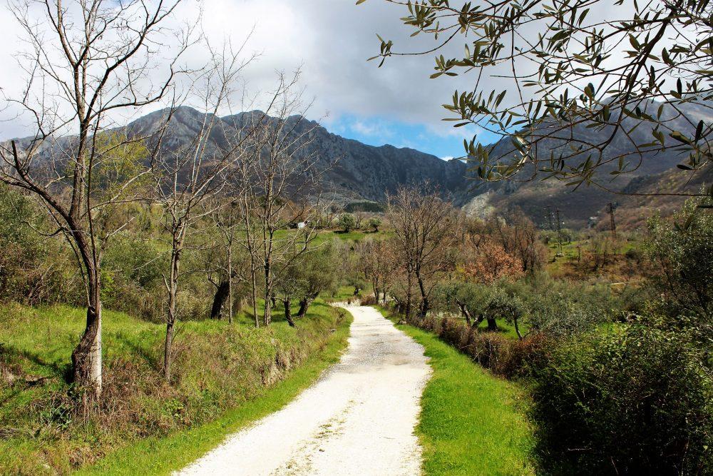 Masseria Mastrangelo la passeggiata nella valle