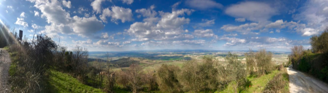 Montalcino il panorama