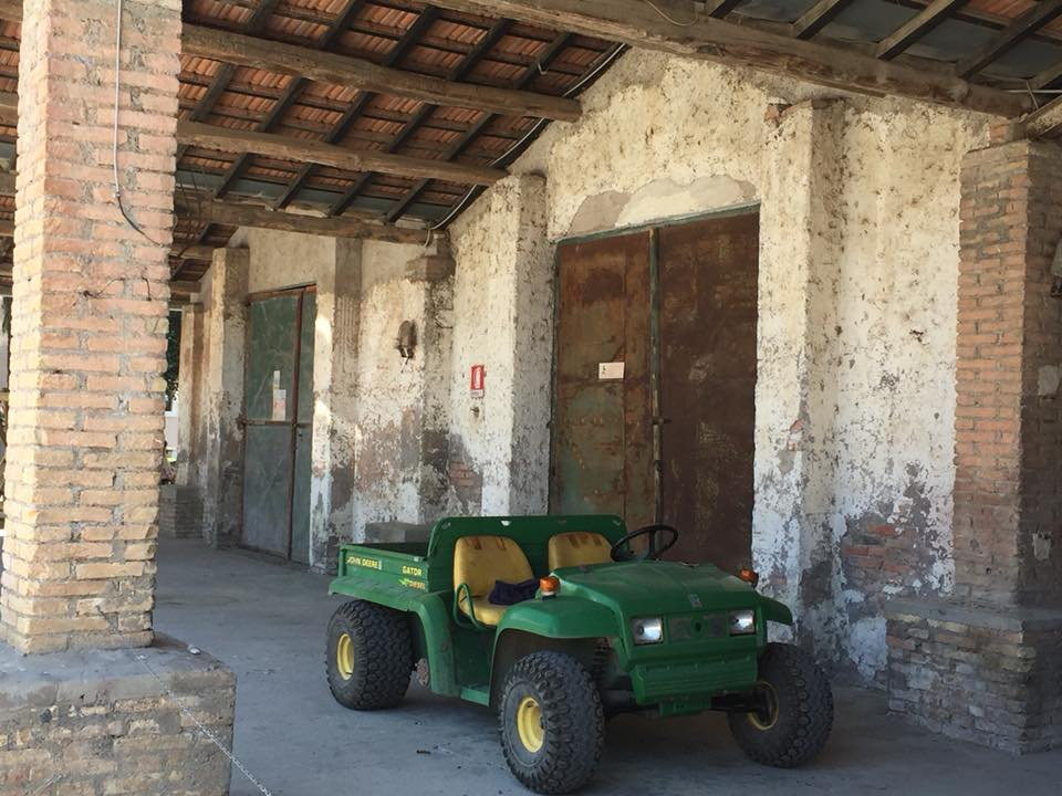 Casali del Pino, i magazzini